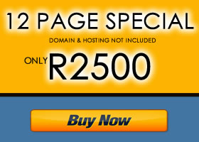 Johannesburg Website Design 12 Page Special